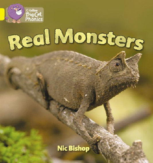 Collins Big Cat Phonics - Real Monsters (Band 03/Yellow)